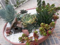 Cactus E Suculentas, Terrarium, Succulents, Diy Landscaping Ideas, Gardening, Garden, Craft, Vertical Gardens, Planters