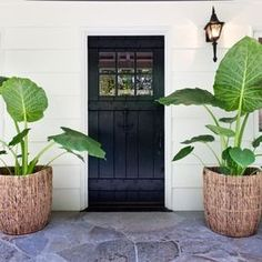 Front Door Planters Design Idea - elephant palms