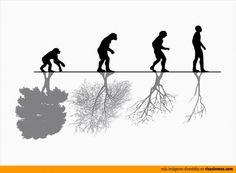 Diario:  Según la imagen, que relación tiene la evolución con el medio ambiente?  ¿Estás de acuerdo con la foto?