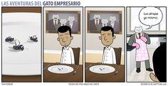 Business Cat - Cena