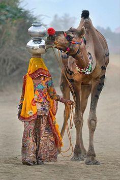 Camel in rajasthan Rajasthani Painting, Rajasthani Art, Village Photography, Rural India, Amazing India, India Culture, Rajasthan India, India India, India Art