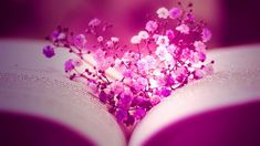 Flowers+Facebook+Cover+Timelines | Free Download Hd Graceful Pink Flower Love Facebook Timeline Cover