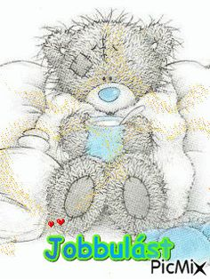 Bear Pictures, Get Well, Quotations, Teddy Bear, Humor, Hungary, Bff, Bears, Animals