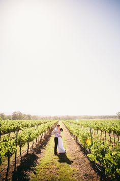 Love in the vineyards // Ballyhoo Photography