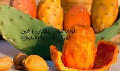 فوائد الصبر - الصبار - ( التين الشوكي ) الغذائية والعلاجية Sweet Potato, Carrots, Cactus, Potatoes, Vegetables, Food, Fitness, Potato, Essen