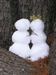 If you're lucky enough to live where you get snow-building snowmen is one of my favorite activities. #PathfinderAdventures