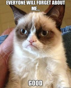Grumpy Cat - Everyone will forget about me Good