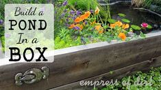 Build A Pond In A Box. Or Raised Bed