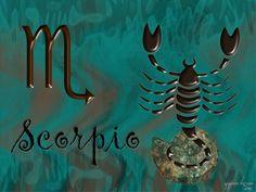 scorpion                                                                                                                                                                                 Plus