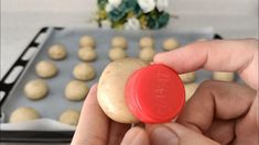 Bolacha Cookies, Baking, Desserts, Wafer Cookies, Savory Snacks, Crack Crackers, Home, Shortbread Cookies, Deserts