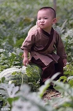 The naughty toddler could be seen running around in the field trying to choose ripe watermelons
