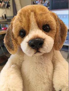 Buddy the Beagle Palm Puppy. OOAK