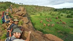 Wild animals digital photography attracts lots of folks, predominantly because of the attraction to creatures as well as for those that desire to pursue an occupation as an animals professional photographer - programs are the finest selection to comprehend some understanding.