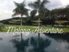 FOOD TRAVEL: MALANG ADVENTURE!  Here's an extension post for my Food Travel of May 2016! Malang Adventure! :D