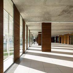 Coslada Library - Pinearq