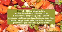 Between now and 2050, a global switch to diets that rely far less on meat and far more on vegetables, fruits, and other plant foods could not only save up to 8 million lives per year, and reduce food-related greenhouse gas emissions by two-thirds. Such a change would also save, in reduced health car…