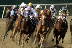 Spend Memorial Day At Lone StarPark - 100.3 Jack FM -  Dallas, TX Day Date Ideas, Book Bar, Grand Prairie, Thoroughbred Horse, Good Dates, Family Outing, Ponies, Memorial Day, Dallas