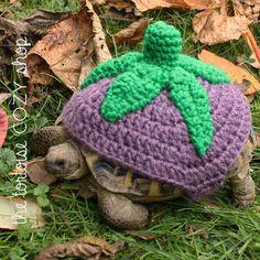 Tortoise Cozy - Eggplant (Aubergine)