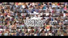 Great marketing for a great cause!  Caso: Territorio de Zaguates. Cliente: Territorio de Zaguates 2013