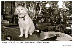 Weblog van Marcel van Gunst (aka Mas): Poes is ziek... • Café Scheltema • Amsterdam