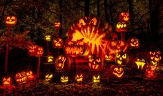Jack 'O Lanterns - 9 Interesting Facts About Halloween Traditions