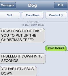 #dog texts