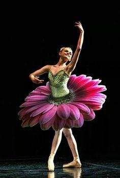 Flowe ballet costumes