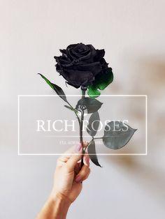 ¿Cuánto tiempo es para siempre? Color Rosa, Bouquet Of Roses, Red Roses, White Roses