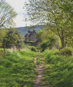 beautiful UK..., I want to live where a foot path leads to my home through the lush green grasses...
