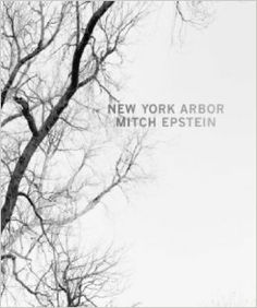 All about Mitch Epstein: New York Arbor by Mitch Epstein. LibraryThing is a cataloging and social networking site for booklovers Washington Square Park, Album Photo, New Series, Book Photography, New York City, Clouds, Life, Trees, Photo Books