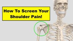 How To Screen Your Shoulder Pain – Squat University