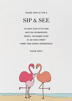 Flamingo Family By Alli Arnold For Paperless Post. Design Custom Sip And  See Invitations With