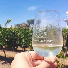 Cheers to the weekend lovely Canberra fans! What fun things have you got planned? Photo @cassielaura #visitcanberra #localscan