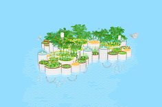 This Tiny Floating Garden Is Successfully Cleaning The Most Polluted Waterway In The U.S� | http://www.ecosnippets.com/environmental/floating-garden-cleaning-polluted-waterway/