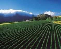 Overberg, South Africa
