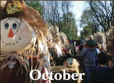 2012 Haunted Trail in Lindenhurst, IL.