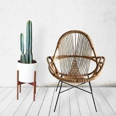 """879 Likes, 11 Comments - Haveli Of Byron Bay (@haveliofbyronbay) on Instagram: """"Chair obsessions #inspiration haveliofbyronbay.com.au . . . . . #boholuxe #islandcottage…"""""""
