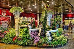 Singapore Garden Festival 2012 - http://singapore-mega.com/singapore-garden-festival-2012/