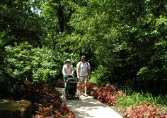 A family stroll at the Arboretum. http://www.opkansas.org/things-to-see-and-do/arboretum-and-botanical-gardens/