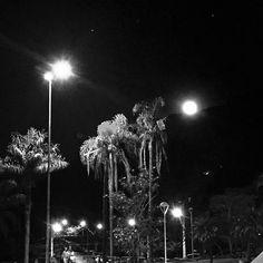 Bia Saltarelli @biasaltarelli  #BH #BeloHorizo...Instagram photo   Websta (Webstagram)