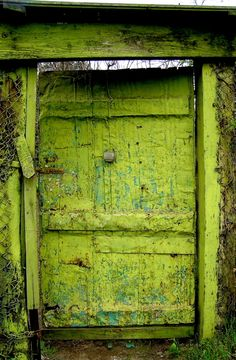 NO, NO DO NOT TELL ME, YOU HAVE LEFT ME WAITING OUT HERE ALL SUMMER. I COULD HAVE COME IN AND PLANTED MY GARDEN , LEFT AND RETURNED TO THE WONDERS THAT LIVE BEHIND THEAT GREEN SAGE OF A BEAUTIFUL DOOR IN A WONDERFUL TOWN