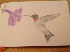Hummingbird by Createarteveryday