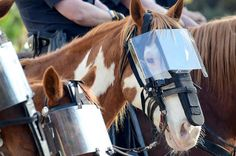 What a wonderful way to protect the horses that serve our communities in the Mounted Divisions of our Police Departments! A big thanks to every one of those officers, two or four legged, for keeping us safe! (16) Facebook