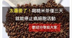 太重要了!喝糙米茶僅三天就能停止癌細胞活動~(快轉分享) | Love分享