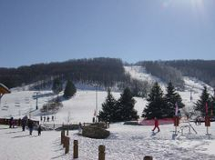 #Ellicottville, NY  Ellicottville NY Local Directory of Local Businesses   Like, share! Thanks!    http://www.linksbuffalo.com/place/wny-classic-cruises/