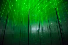 450 square meters of musical forest comprised of 150 'trees' for audience to explore spatially and physically by tapping, shaking, plucking, and vibrating them to trigger sounds and lasers.