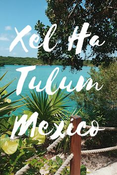 Spend a day at Xel Ha, Tulum, Mexico