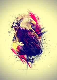Eagle smoothly blended into its own environment with an eye grabbing mix of colors