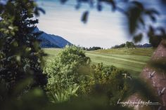 Hochzeit Petra und Hannes Waidmansfeld Times New Roman, Petra, Vineyard, Country Roads, Mountains, Nature, Travel, Outdoor, The Great Outdoors