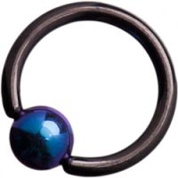 Black Steel Ball Closure Rings with 2-Tone Purple/Blue Titanium Ball
